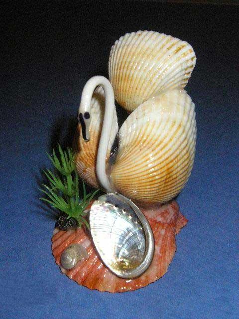 Поделка из морских ракушек своими руками